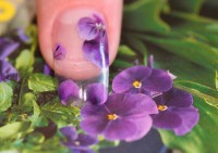 Слабые ногти: это не проблема