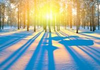 Нехватка солнца может вызвать ожирение