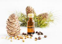 Масло из кедровых орехов поможет снизить вес
