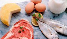 Особенности белковой диеты