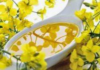 Рапсовое масло поможет избавиться от лишних килограммов
