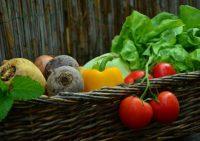Ученые рассказали о глобальных последствиях перехода на вегетарианскую пищу