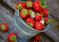 Названы овощи и фрукты, замедляющие старение