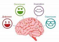Гормоны удовольствия и счастья