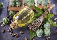 Как применять касторовое масло: все полезные свойства касторки