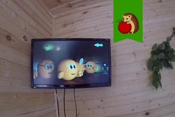 Телевизор на даче